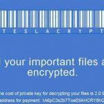 TeslaCrypt virus fotografija